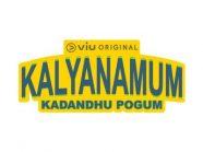 web site logo_11